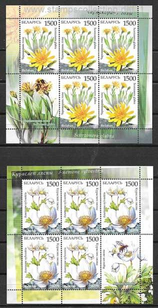 stamps wild flowers of belarus