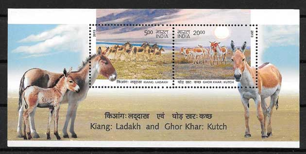 philately stamps wildlife wild donkeys India 2013